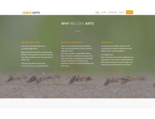 Ameisenhaufen als Firmenphilosophie:  Agile Ants hat die Natur zum Vorbild